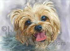 Yorkie Yorkshire Terrier Dog Art Print of Watercolor Painting Signed CLANCY