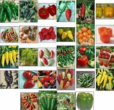 HOT PEPPER SEEDS also BEll*SWEET*GHOST*THAI*CAYENNE all HEIRLOOM non-GMO!