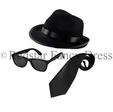 BLUES BROTHERS HAT SUNGLASSES BLACK TIE FANCY DRESS COSTUME STAG PARTY GANGSTER