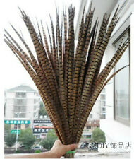 Wholesale,10-100 PCS beautiful pheasant tail feathers 50-55 cm / 20-22 inches