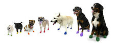 PAWZ Disposable Rubber Dog Boots - 12 pieces per pack!