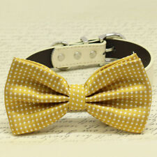 Mustard Bow tie attached to dog collar, Wedding Dog Accessory, Chic and Elegent