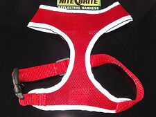 Nite Brite Reflecting Dog Harness by Four Paws - 4 sizes