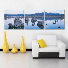 MONO LAKE Ready to Hang 3 panel mounted Picture/BetterThan Stretched Canvas Art