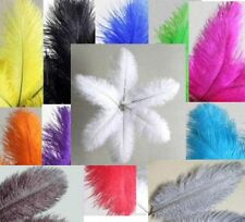 "10 OSTRICH feathers 8-10"" Quills Drabs Plumes CHOOSE COLOR or MIX 20-25cm"