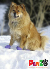 PAWZ disposable natural rubber dog boots/shoes - buy a single boot or multiples