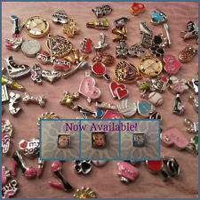 Floating Charms For Glass Life Lockets