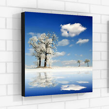 Winter Photo Print on Canvas Nature Home WALL ART DECOR Office Decor Framed