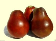 Japanese Black Trifele/truffle Tomato-HEIRLOOM SEEDS- Chocolaty, Smoky and Rich!