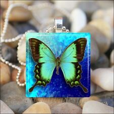 """BUTTERFLY BLUES"" SPRING SUMMER BUTTERFLY GLASS TILE PENDANT NECKLACE KEYRING"