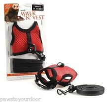 Small ferret + rat harness & lead + pet finder bell