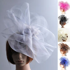 LADY GIFT HAIR CLIP ACCESSORY FASCINATOR WEDDING HAT LARGE MESH HANDMADE FEATHER
