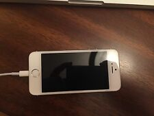 Factory Unlocked - Apple iPhone 5s - 16GB - Silver Smartphone - Great Condition!