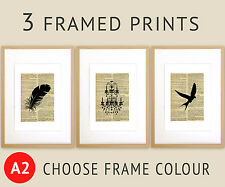 Vintage Feather Set 3 Framed Print A2 Size Wall Art Print + Choose Frame Colour