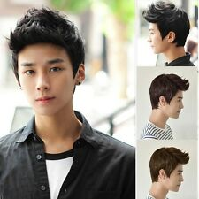 New Fashion Men Wig Handsome Vogue Sexy Korean Boys Short Hair male Cosplay Wigs
