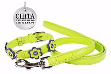 Flower Girl Leather Dog Collar Leash Set Soft Padded Small Medium Large Lime