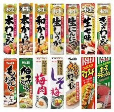S&B Spice Paste Tube Wasabi Mustard Ginger Garlic Pepper Yuzu UME Import JAPAN