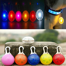 Fascinating Pet Dogs Cat Puppy LED Flashing Collar Safety Night Light Pendant