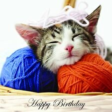 Birthday & Christmas Greetings Cards Cat & Kittens Designs from Red Frog Cards