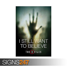 X FILES I STILL WANT TO BELIEVE MULDER SCULLY MOVIE TV (1150) Poster Print