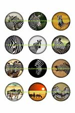 "ZEBRA 1 "" CIRCLES  BOTTLE CAP IMAGES. $1.95-$4.50"
