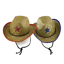 Cowboy Star Straw Costume Kids Hat Sheriff Police Western Rodeo LOT