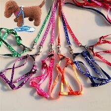 Adjustable Small Harness + Leash Set For Small Pet Cat Puppy Kitten Rabbit Dog