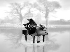 Crow Grand Piano on B&W Background Original Signed Matted Picture Art Photo A225