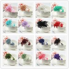 280/Artificial Flower Stamen Double Tip Pearlized Craft Cards Cake Decor.