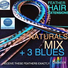 Feather Hair Extensions Naturals Grizzly Blues Mix Loop Tool Beads Kit Options