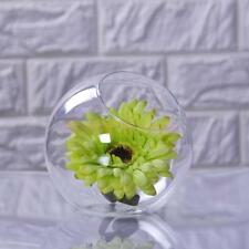 Glass Clear Globe Flower Plant Pot Vase Holder Hydroponic Container Table Decor