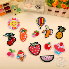 13Pcs Embroidered Fruit Sew On / Iron On Patches Badge Bag Fabric Applique Craft