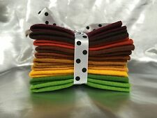 Mix Felt Craft Pack Autumn & Fall Colours 10 sheets 5 different sizes