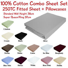 Quality New Kingdom 250TC Pure Cotton Combo Sheet Set-Fitted Sheet & Pillowcases