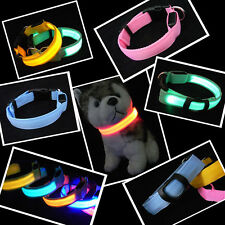 LED Dog Night Safety Pet Flashing Light Adjustable Cat Nylon Collar Leash Choice