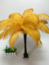 Wholesale, 10-100pcs special color ostrich feathers 6-16inches/15-40cm 16 colors