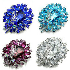 Women's Banquet Party Broach Rhinestone Crystal Butterfly Pin Brooch Braw