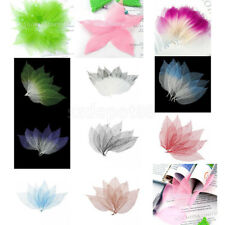 50pcs Natural Skeleton Leaves Rubber Tree Scrapbooking Craft DIY Card Wedding
