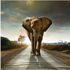 20/30/40/50/60cm Animal Print Canvas Wall Hanging Art Painting Picture Elephant