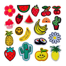 10PCS Embroidered Fruits Patches Appliques Sew On Patch for Kids Clothing Baby