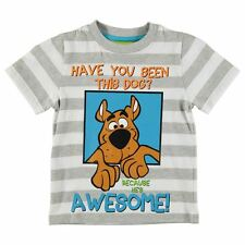 Boys Character Short Sleeve T-Shirt Scooby Doo II New With Tags