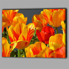 Tulips Yellow Orange Summer Gift Canvas Wall Art Print Framed A1 Large Picture