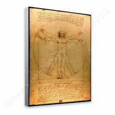 READY TO HANG CANVAS The Vitruvian Man Leonardo Da Vinci Framed Print Giclee