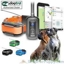 Dogtra Pathfinder 2-Dog System - GPS Tracking/Remote Trainer with 2 Collars