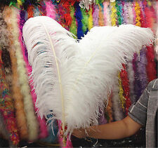Wholesale!10-100pcs High Quality Natural OSTRICH FEATHERS 8-22 inch/20-55cm
