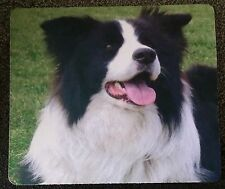 BORDER COLLIE, GIFTS Stickers /Stubby holders & Coasters  - Great gift ideas