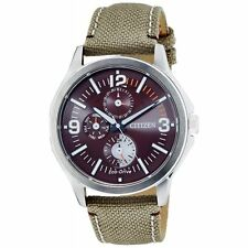 Citizen ECO-DRIVE Mens Analog Watch Casual Brown AP4000-07W