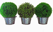 Artificial Topiary Ball Plant in Metal Pots For INDOOR & OUTDOOR Buxus or Moss