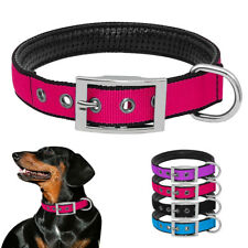 Nylon Pet Dog Collar Heavy Duty Buckle with D-ring Padded for Small Medium Dogs