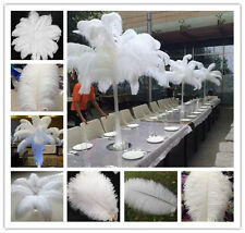 Wholesale 100pcs White Natural OSTRICH FEATHERS 6-28inch /15-70cm